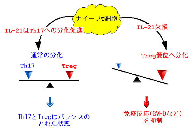 Asthma大人の喘息病院福岡市内科...